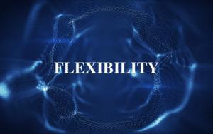 Digitals waves flexibility Privacy Praxis